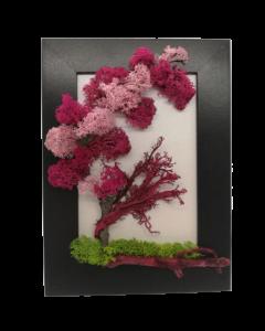 Aranjament licheni, cod ARL03