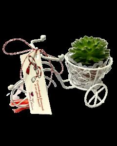 Aranjament floral, cod MAR004