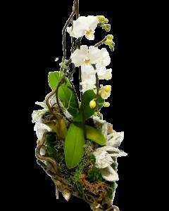 Aranjament floral, cod MAR010